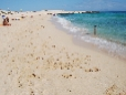 guide_beach_fuerteventura