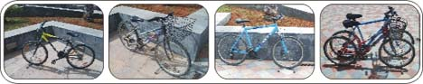 Caleta Cycles Mountain Bikes