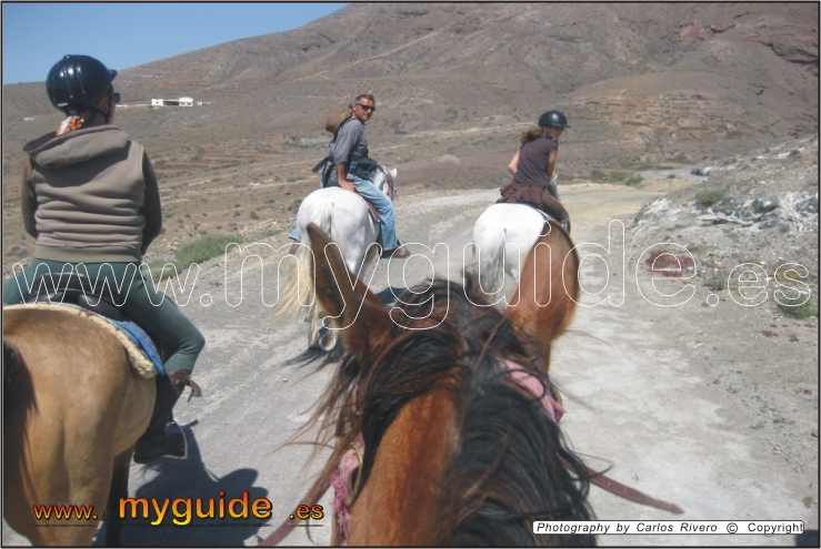 You are browsing images from the article: Horse riding excursions in Fuerteventura, Triquivijate - Equestrian Center Finca Crines del Viento