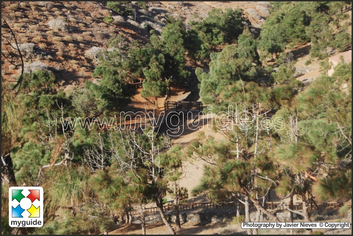 You are browsing images from the article: Picnic area in the Pinar de Betancuria in Fuerteventura